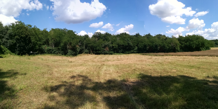Valorisation site archéologique Ormesson