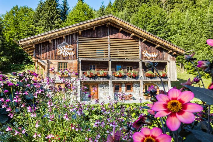 Ferme traditionnelle Clusaz Hameau des Alpes