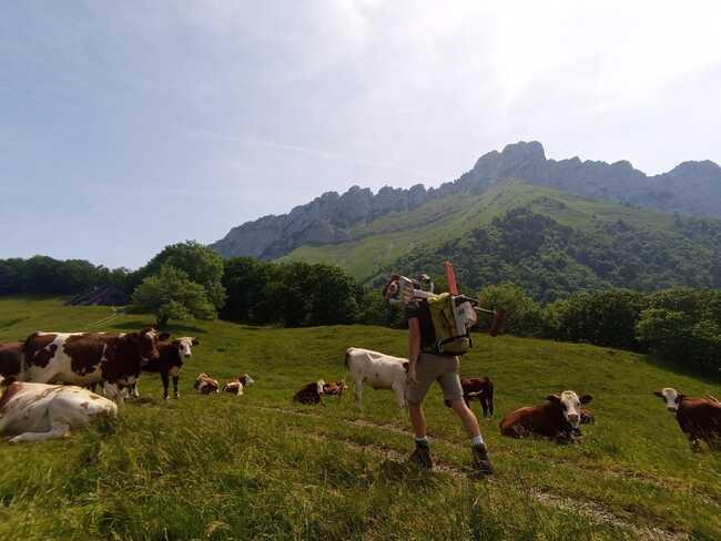 entretien sentiers coeur de savoie tourisme montagne