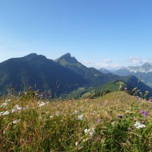 Paysage Bauges Auvergne Rhône-Alpes